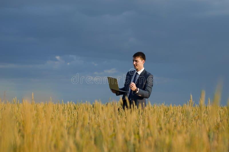 Szczęśliwi buisnessmen w pszenicznym polu zdjęcie royalty free