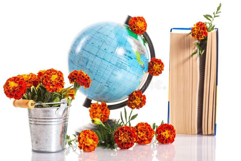 Szczęśliwi nauczyciele! zdjęcie royalty free