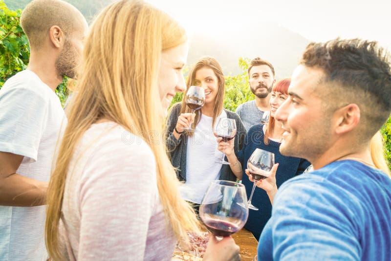 Szczęśliwi przyjaciele ma zabawę i pije wino przy winnicy ogrodowym przyjęciem zdjęcie stock
