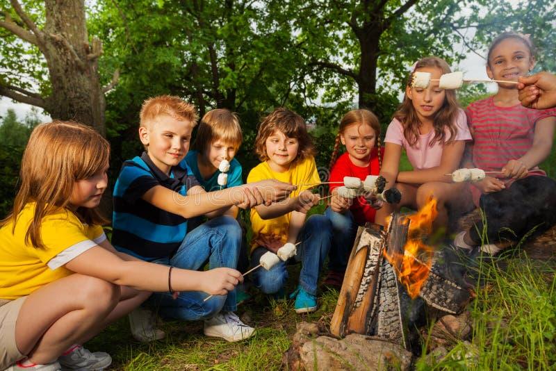 Szczęśliwi przyjaciele zbliżają ognisko z marshmallow obrazy royalty free
