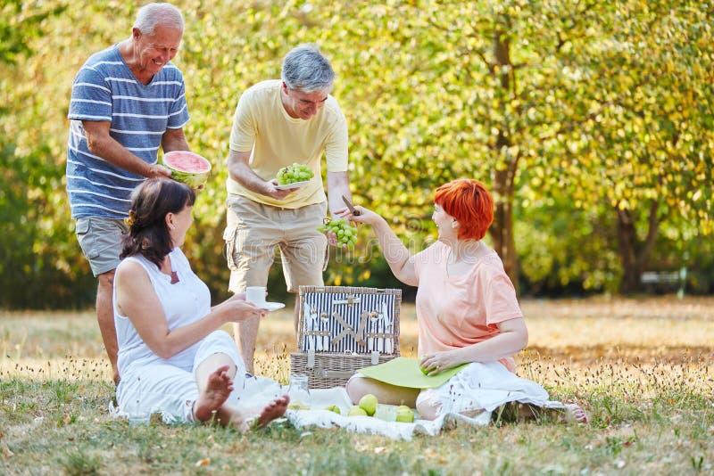 Szczęśliwi seniory przy parkiem obrazy stock