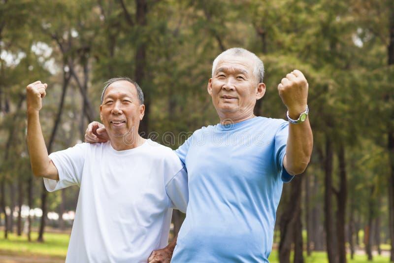 Szczęśliwi starsi bracia cieszą się przechodzić na emeryturę czas w parku fotografia stock