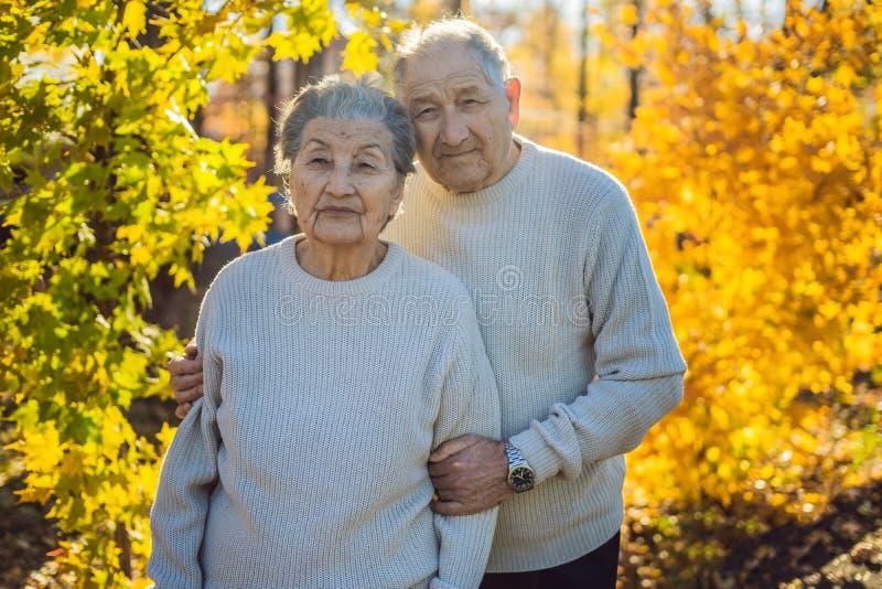 Szczęśliwi starsi obywatele w jesieni rodzinie, wieku, sezonie i ludziach pojęć lasowych, - szczęśliwa starsza para chodzi obraz royalty free