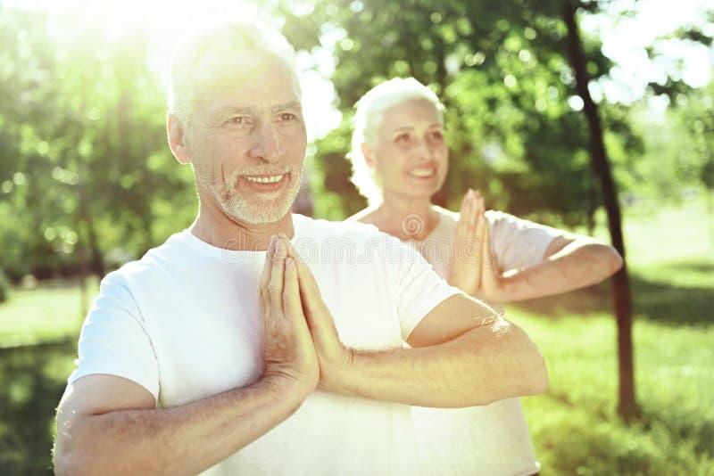 Szczęśliwi starzejący się ludzie robi joga ćwiczeniom obrazy royalty free