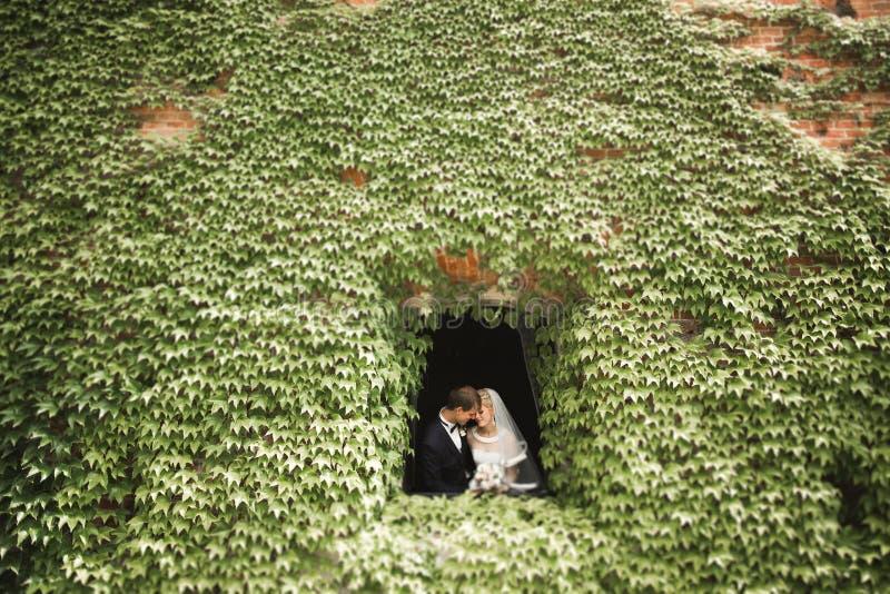 Szczęśliwy ślub pary odprowadzenie w botanicznym parku fotografia royalty free