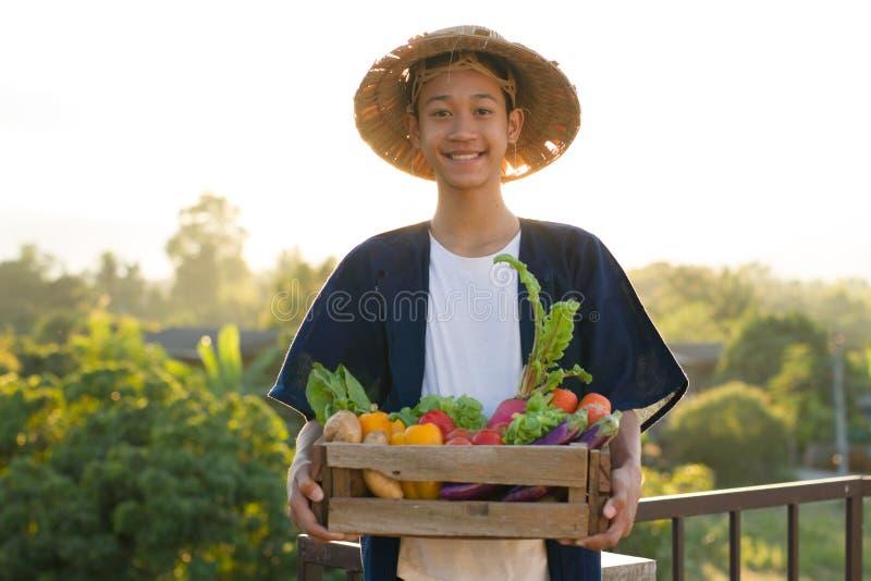 Szczęśliwy Asia średniorolny ono uśmiecha się, chwyt i folowaliśmy kosz organicznie warzywo obraz royalty free