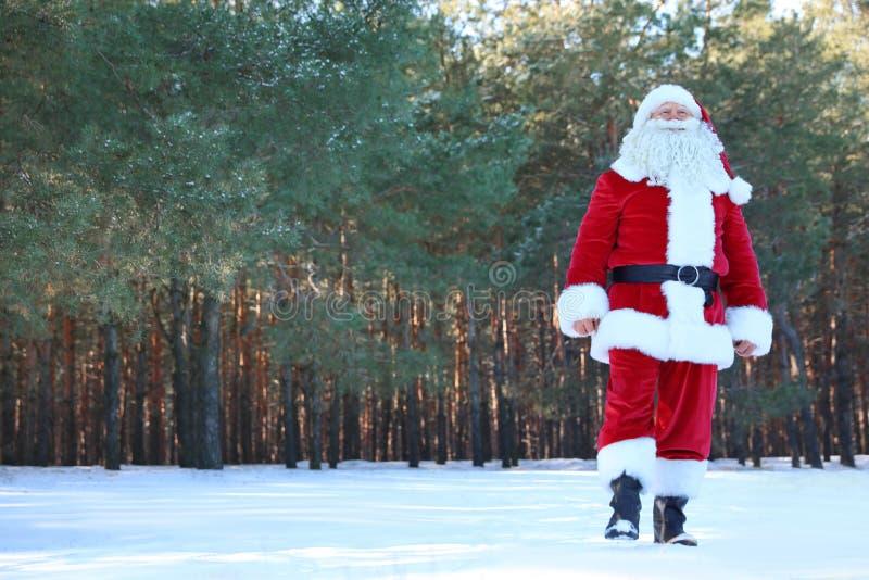 Szczęśliwy Autentyczny Święty Mikołaj chodzi outdoors fotografia stock