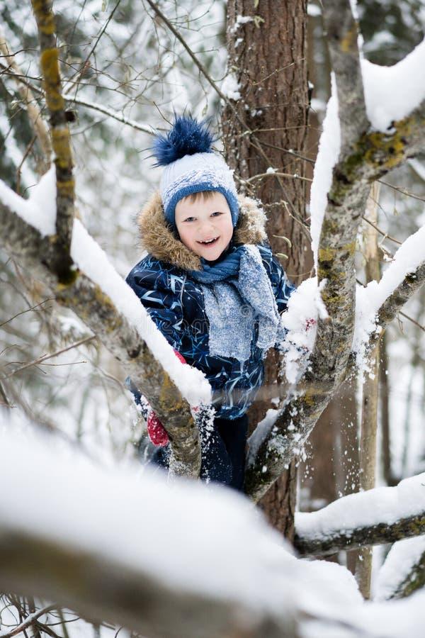 Szczęśliwy dzieciństwo - mała rozochocona chłopiec wspina się drzewa w śnieżnym lesie w zimie zdjęcia stock