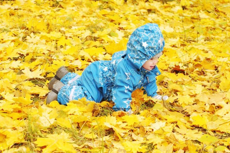 Szczęśliwy dziecko wiek 1 rok skrada się outdoors wśród żółtych liści obrazy royalty free