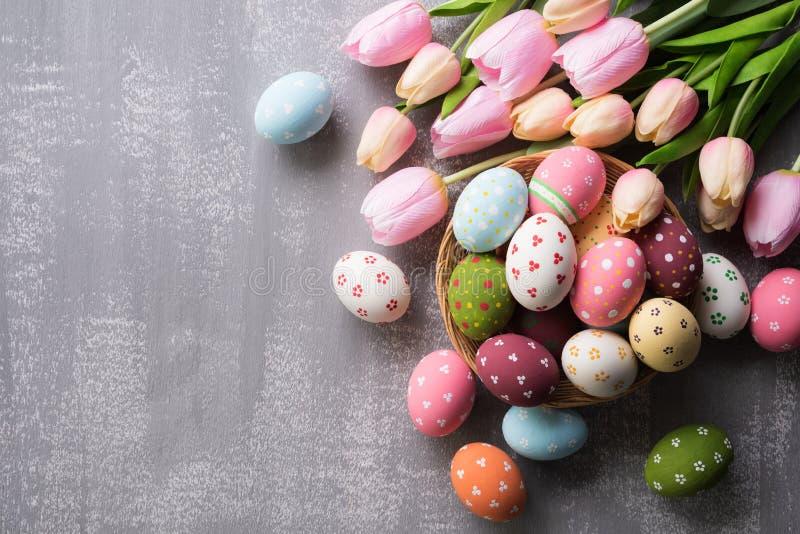 Szczęśliwy Easter! Colourful Wielkanocni jajka w gniazdeczku z różowym tulipanowym kwiatem i piórku na szarym drewnianym tle obraz royalty free