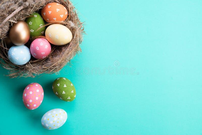Szczęśliwy Easter! Kolorowy Wielkanocni jajka w gniazdeczku z kwiatem i piórku na jaskrawym - zielony pastelu papieru tło obraz royalty free