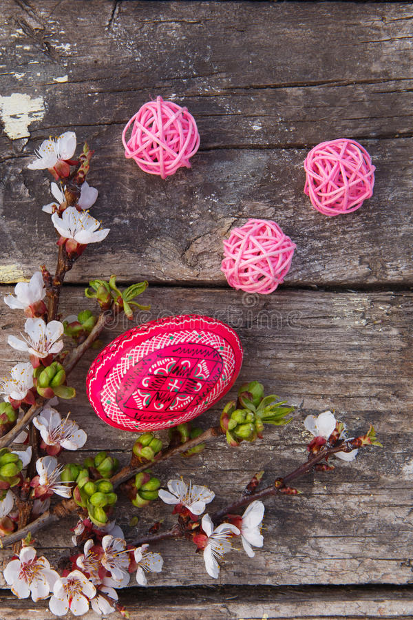 Szczęśliwy Easter z jajkami i wiosna kwiatami zdjęcie stock