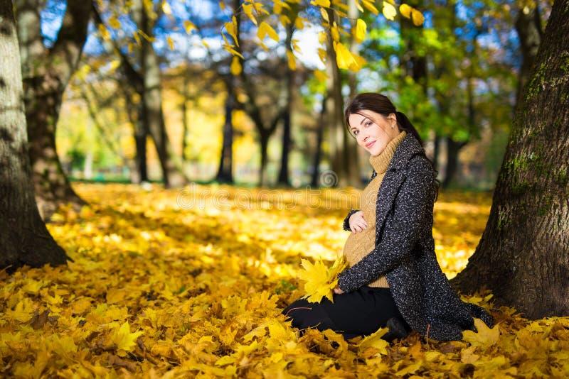 Szczęśliwy kobieta w ciąży obsiadanie w jesień parku obrazy stock