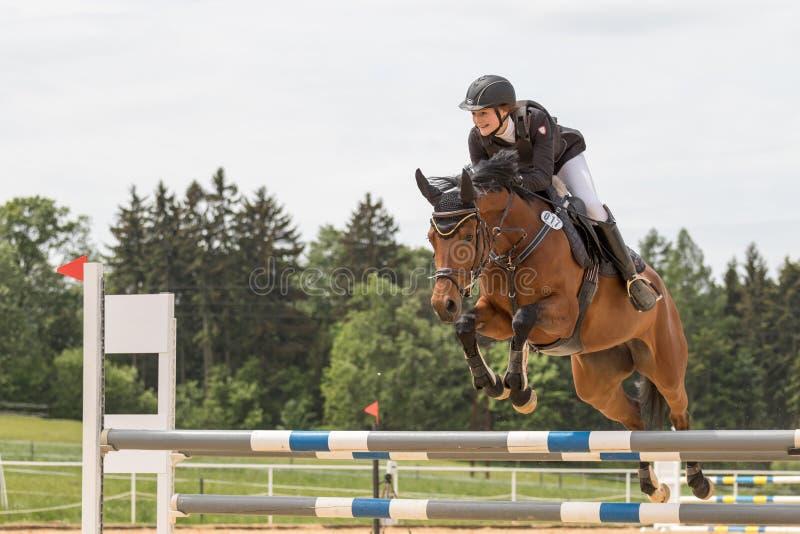 Szczęśliwy młody horsewoman skacze nad przeszkodą zdjęcie royalty free