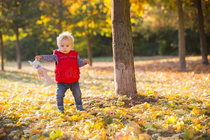 Szczęśliwy małe dziecko, chłopiec śmia się i bawić się w jesieni, fotografia royalty free
