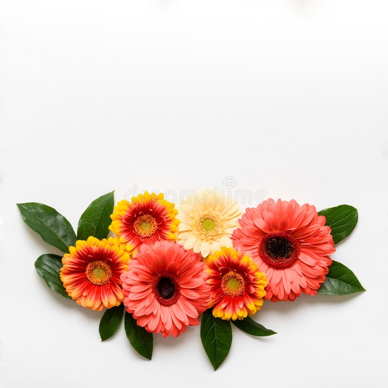 Szczęśliwy matka dzień, kobieta dzień, walentynka dzień lub urodziny Pantone koloru Żywy Koralowy tło, Koralowego mieszkania niea zdjęcia stock
