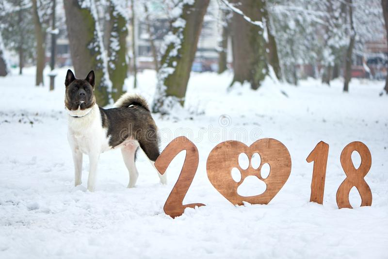Szczęśliwy nowego roku 2018 kartka z pozdrowieniami zdjęcia stock