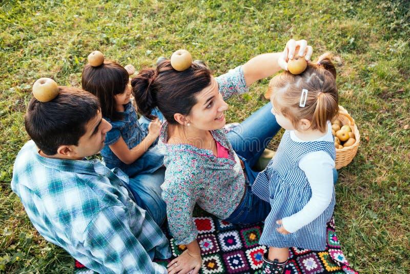 Szczęśliwy rodzina składająca się z czterech osób kłama w trawie bawić się z jabłkami w a obrazy royalty free