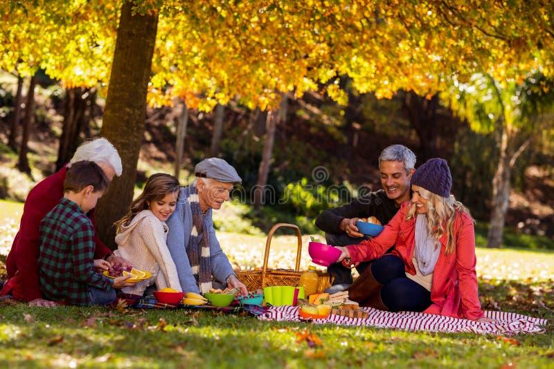 Szczęśliwy rodzinny mieć śniadanie przy parkiem zdjęcie royalty free