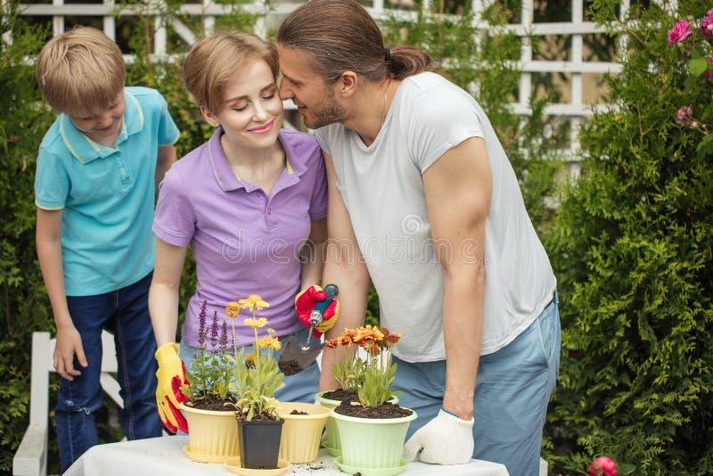 Szczęśliwy rodzinny uprawiać ogródek wpólnie i brać opiekę natura zdjęcia royalty free