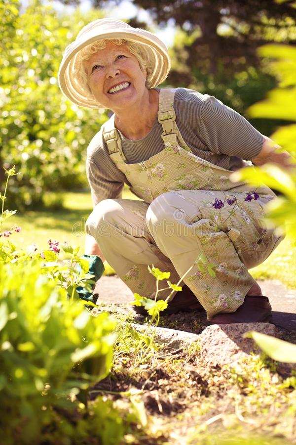Szczęśliwy starszy kobiety ogrodnictwo obraz stock