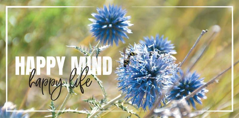 Szczęśliwy umysł, szczęśliwe życie Wzór tekstu, litery Piękne, inspirujące, motywujące cytaty życia Niebieski kwiat w przyrodzie zdjęcia stock
