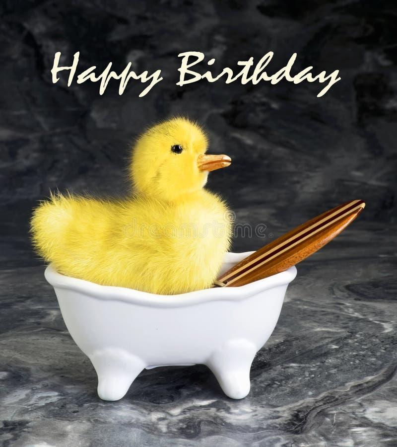 szczęśliwy urodziny zdjęcia royalty free