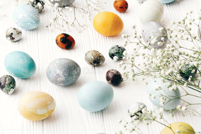 Szczęśliwy Wielkanocny kartka z pozdrowieniami Eleganccy Easter jajka z wiosną kwitną na białym drewnianym tle Nowożytni Easter j fotografia stock