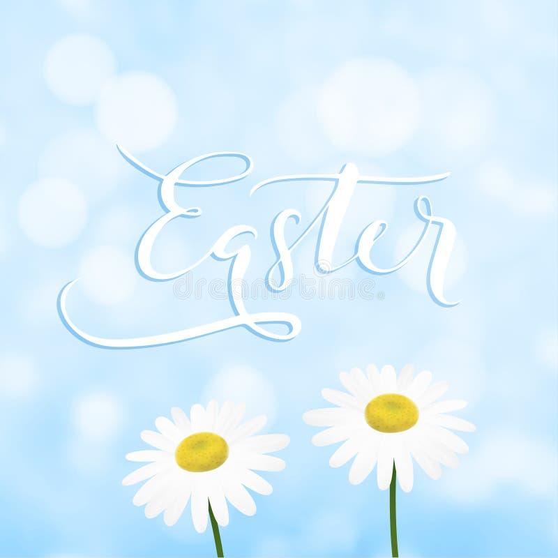 Szczęśliwy Wielkanocny kartka z pozdrowieniami, zaproszenie z ręcznie pisany tekstem, stokrotka, marguerite niebieskie niebo lub  ilustracja wektor