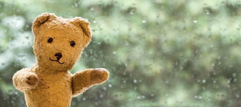 Szczęśliwy zabawka niedźwiedź obrazy stock