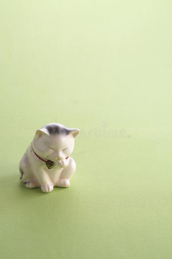 Szczęsliwa kot lala zdjęcia royalty free