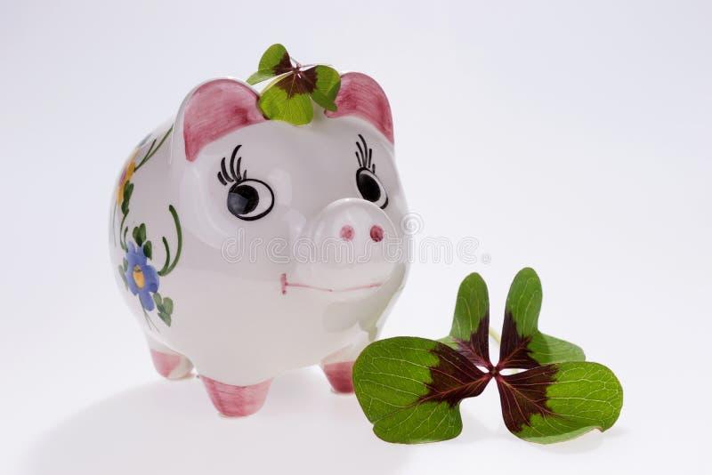 Szczęsliwa urok świnia z cztery liści koniczyną zdjęcie royalty free