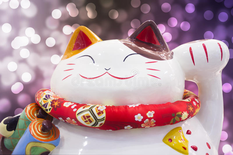 Szczęsliwy kot obrazy stock