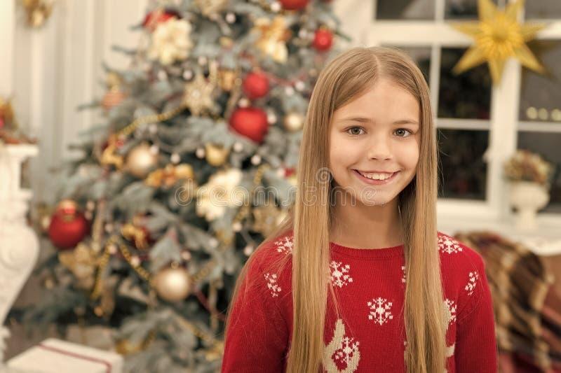 szcz??liwego nowego roku, Zima Choinka i tera?niejszo?? xmas online zakupy Rodzinny wakacje Ranek przed Xmas fotografia royalty free