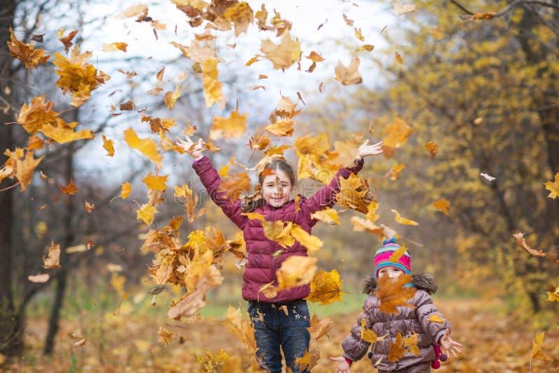 Szcz??liwi dzieci dziewczyny rzucają w górę jesień żółtych liści na natura spacerze outdoors liścia klonowego spadek w parku obrazy royalty free