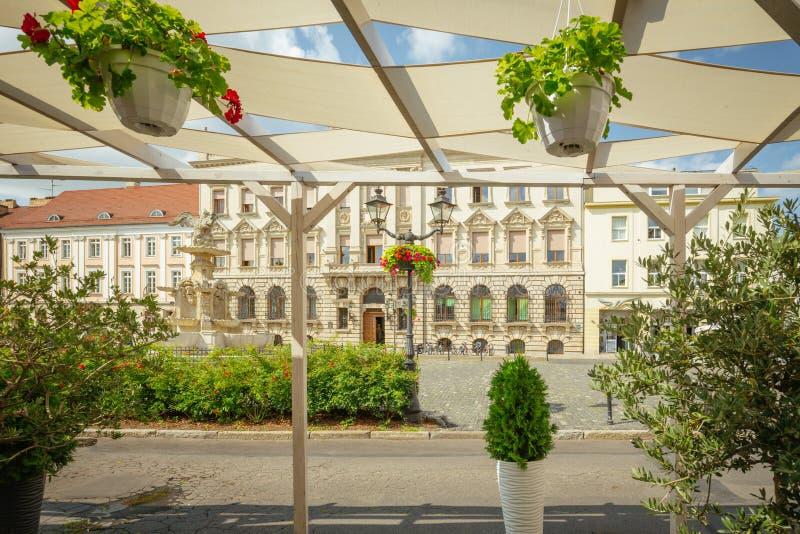 Szczecin Historische Architektur des White Eagle Square Polen stockbild