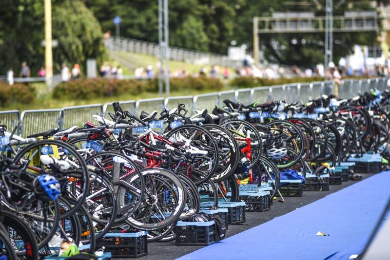 Szczecin, Polen, am 9. Juli 2017: Triathlon Szczecin, viele fahren rad stockfoto