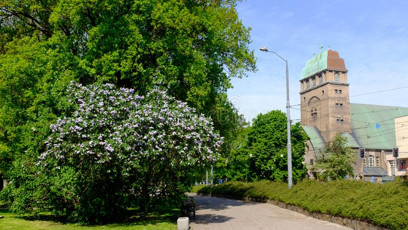 Szczecin. Springtime view of the church in the city center royalty free stock photo