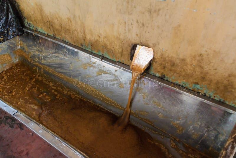 Szczegół dolewanie trzcina cukrowa sok zdjęcia royalty free
