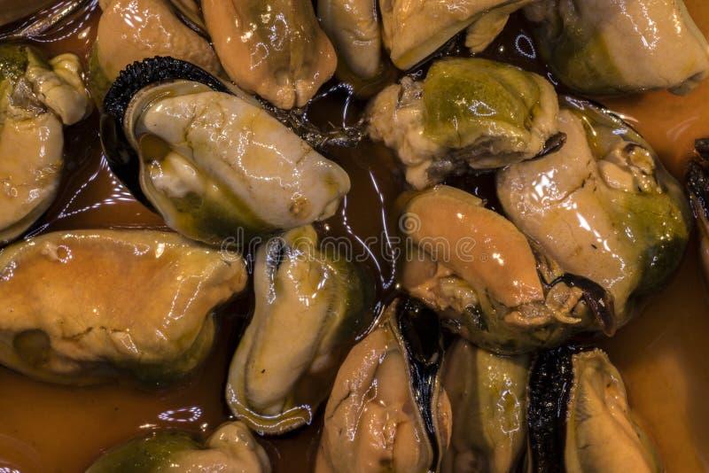 Szczegół kiszeni mussels zdjęcie stock