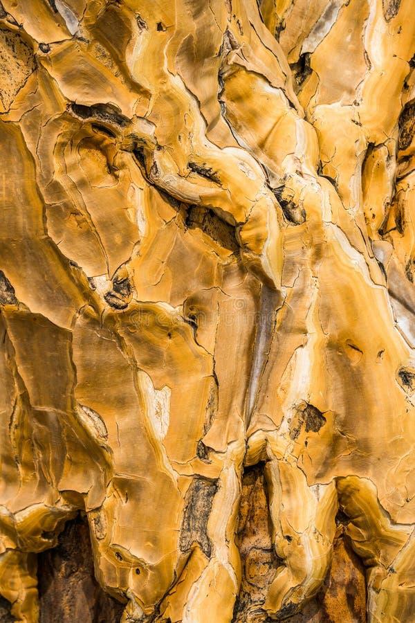Szczegół kołczan drzewna barkentyna obraz stock