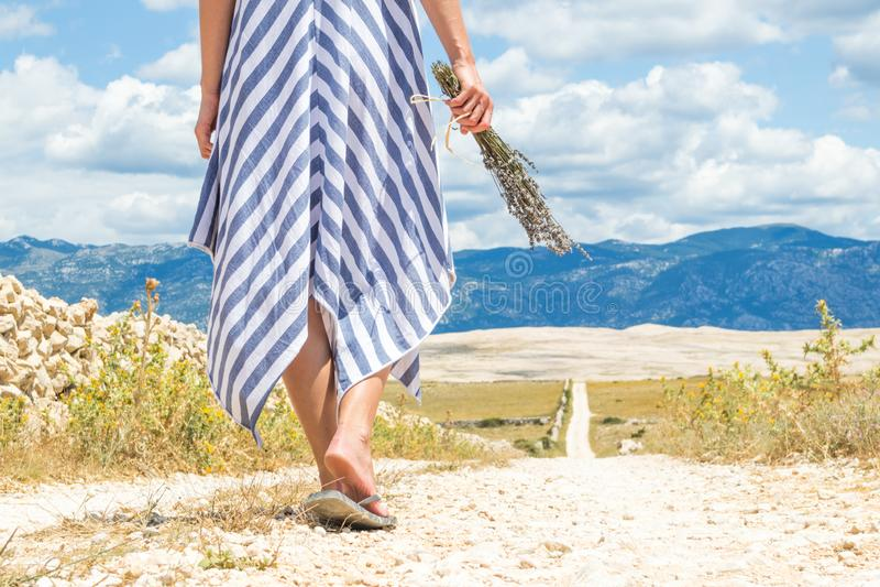 Szczegół kobieta w lato sukni mienia bukiecie lawenda kwitnie podczas gdy chodzący plenerowy przelotowy suchy skalistego fotografia royalty free