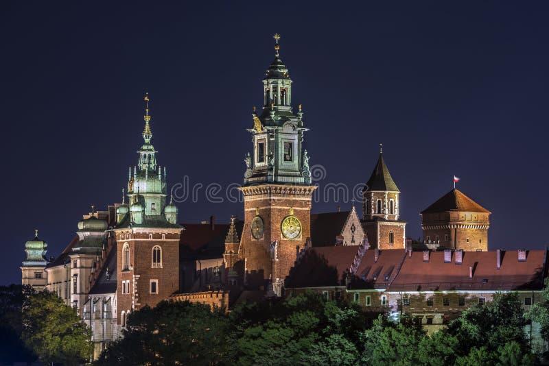 Szczegół Królewski grodowy Wawel w Krakow zdjęcia royalty free