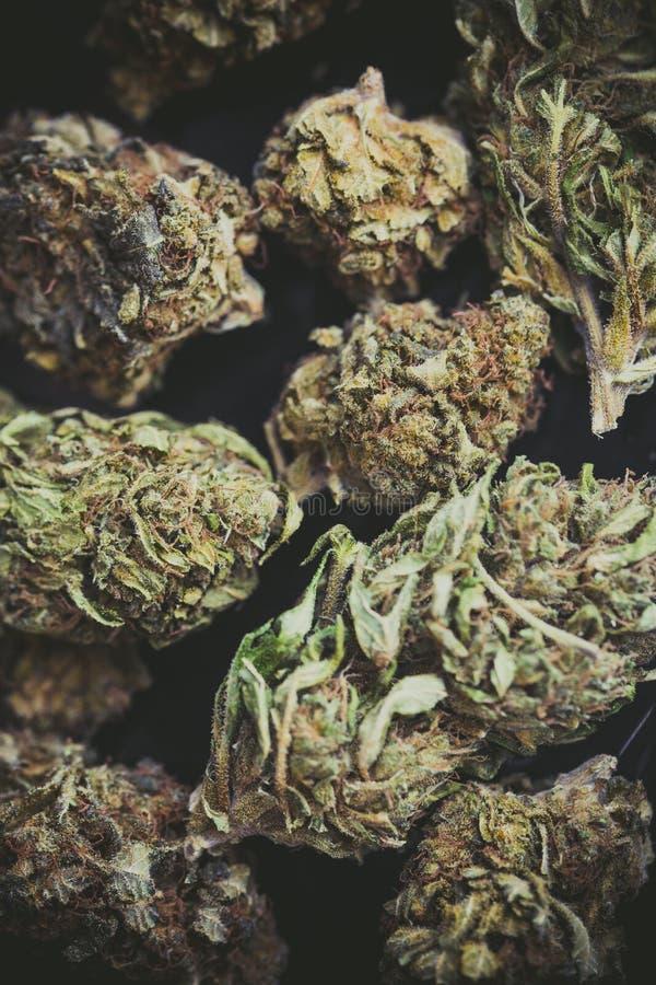 Szczegół kwiat marihuana pączki zdjęcia royalty free