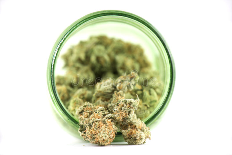 Szczegół marihuana pączki & x28; mango ptysiowy strain& x29; na zielonego szkła słoju ja fotografia royalty free