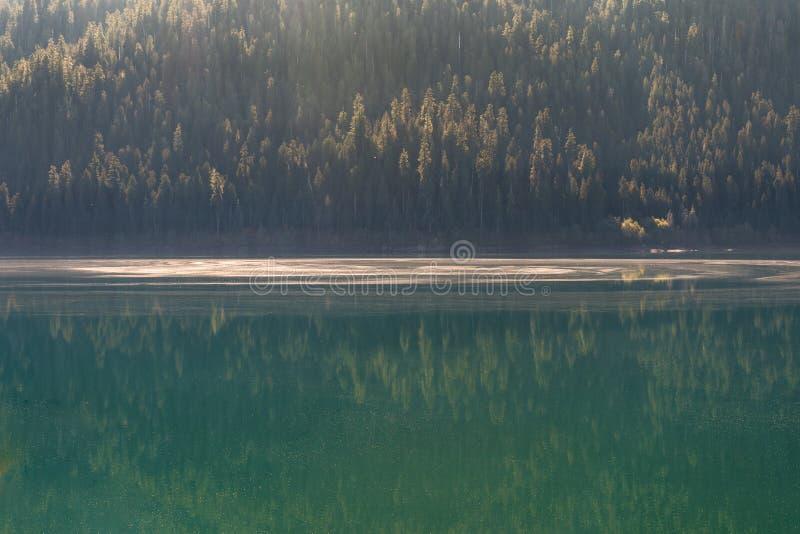 Szczegół Piekarniana jezioro woda zakrywająca z pollen i spadać drzew ziarnami w Norh kaskadach, obraz royalty free