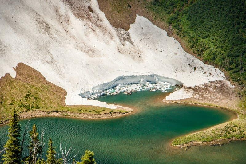 Szczegół spada w jezioro przy Acamina grani śladem lodowiec, Waterton jeziora NP, Kanada obrazy stock
