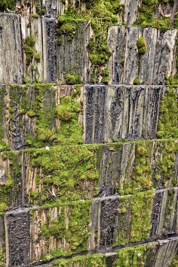 Szczegół stara drewniana masa zakrywał dach obraz stock