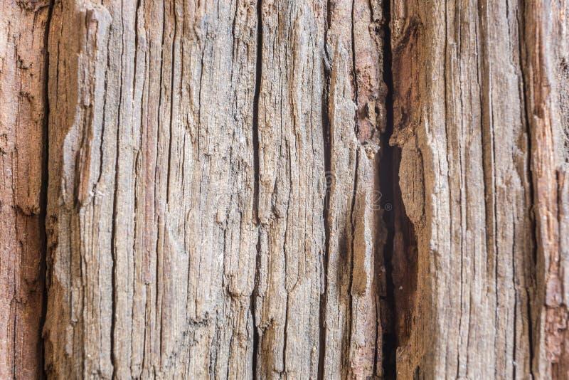 Szczegół stara drewno barkentyna obrazy royalty free