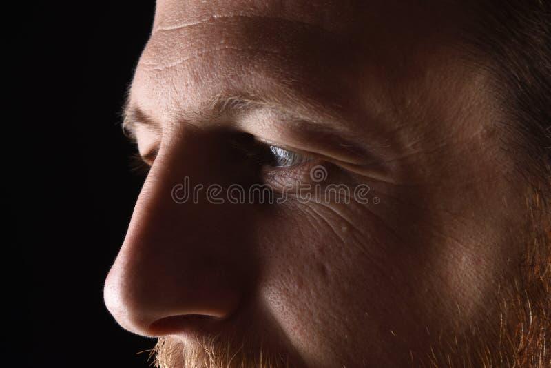 Szczegół twarz mężczyzna w jego wczesnych trzydzieści fotografia royalty free